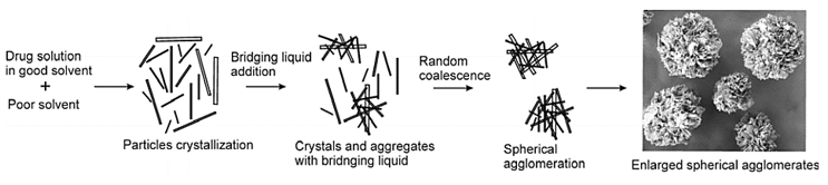 Proposed mechanism of spherical agglomeration