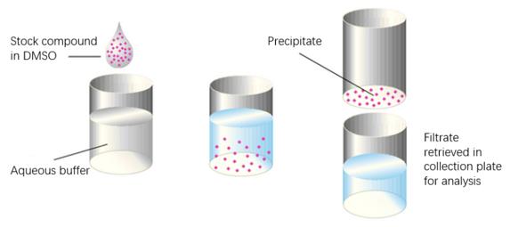 Shake-Flask Solubility Assay.